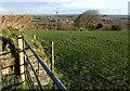 SX2685 : Field on Red Down by Derek Harper