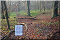 SP8802 : Old Badger Route by Shaun Ferguson