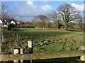 SX2386 : Field at Badgall by Derek Harper
