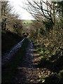 SX2286 : Track to Badgall Downs by Derek Harper