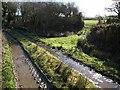 SX2286 : Track and bridge below Bagnall Downs by Derek Harper