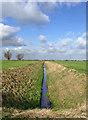 SE9128 : Drain near Ellerker Sands Farm : Week 10
