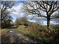 SX2589 : Lane approaching Penrose Green by Derek Harper