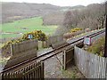 SN6879 : Vale of Rheidol Railway foot crossing by John Lucas