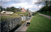 ST9861 : Caen Hill locks, Devizes by Dr Neil Clifton