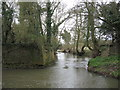 SP1765 : Willow Brook by Matthew Lee