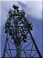 TL4850 : Radio mast close-up by Keith Edkins