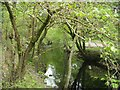 SJ0218 : River Vyrnwy below dam by John Firth