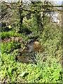 SW7528 : The stream at Trenarth bridge by Rod Allday