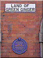 Photo of Land of Green Ginger and Winifred Holtby blue plaque