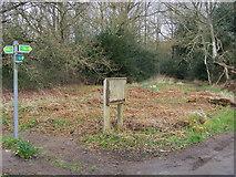 SU8497 : Footpaths on Naphill Common by Shaun Ferguson