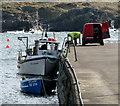 C0437 : Port na Blagh harbour : Week 16