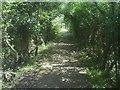 ST7762 : Footpath near Monkton Combe by Graham D