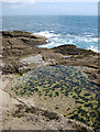 SW4524 : Rock pool on Kemyel Point by Pauline E