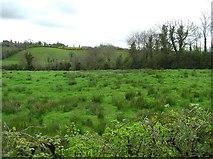 H6038 : Near Feebaghduff by Kenneth  Allen
