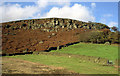 SE0254 : Eastby Crag, near Skipton, Yorkshire by Dr Neil Clifton