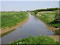 TF3707 : North Level Drain, Murrow, Cambs by Rodney Burton