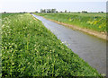 TF3706 : North Level Drain, Murrow, Cambs by Rodney Burton
