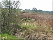 G7108 : Boggy land at Toomour by Oliver Dixon