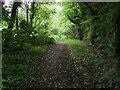 SU9099 : South Bucks Way by Shaun Ferguson