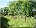 SE0733 : St Paul's Churchyard - Halifax Road by Betty Longbottom