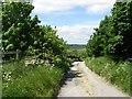 SE0635 : Bridleway - Manywells Brow by Betty Longbottom