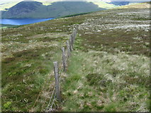 NT2621 : Peat Law towards St Mary's Loch by Chris Wimbush