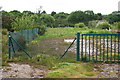 SW7841 : Fenced off Section of the Carnon River Valley by Tony Atkin