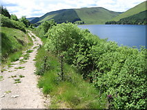 NT2421 : Southern Upland Way by St Mary's Loch by Chris Wimbush