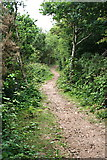SW7643 : Bridleway through Cusveorth Coombe by Tony Atkin