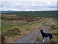 NG3050 : Old road towards Edinbane : Week 24