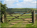 SW8338 : River view from Pill Farm by Rod Allday