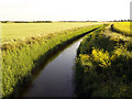 TA2426 : Keyingham Drain from The old Hull to Withernsea Railway : Week 25