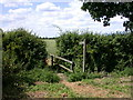 TL3153 : Footpath to, er, well, Longstowe, I suppose by Keith Edkins