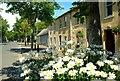 J5336 : Floral display, Killough : Week 28