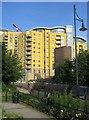 """SU6352 : """"Custard Towers"""" : Week 29"""