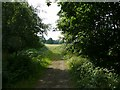 SK3199 : View into Wortley Park by Wendy North