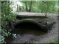 SE3201 : Arched bridge  by Wendy North