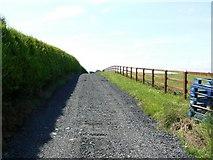 N6520 : Untarred road by James Allan