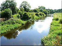 N6123 : River Figile by James Allan