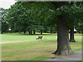 TQ4572 : Longlands Recreation Ground, Sidcup, Kent by Roger  Kidd