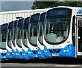 J5081 : Buses, Bangor : Week 31