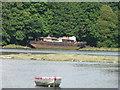 SX4560 : Hulk at Tamerton Lake, Plymouth. by Mick Lobb
