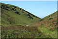 SX0382 : St Teath: Tregragon link path by Martin Bodman