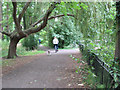 TQ2668 : The Wandle Trail through Ravensbury Park by Stephen Craven
