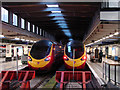 TQ2982 : Pendolinos at Euston : Week 35
