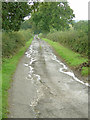 SK4037 : Brunswood Farm access road by Alan Murray-Rust
