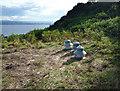 NH6851 : Pheasant feeding country by Julian Paren