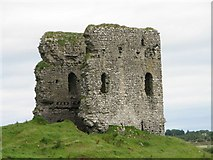 M6149 : Moylough castle by liam murphy