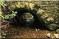 S4456 : Bridge Arch by kevin higgins